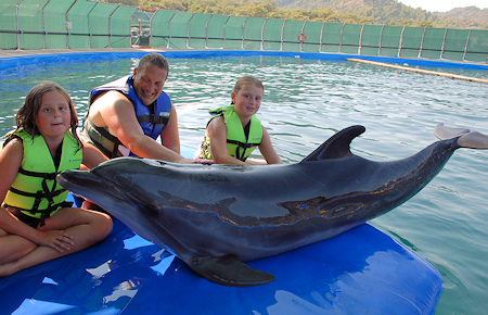 A view from Marmaris Swimming with a dolphin