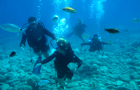 A view from Scuba Diving