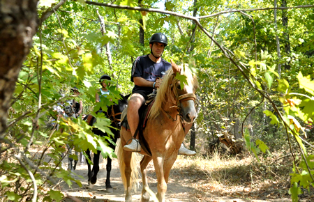 A view from Bodrum Horse Safari