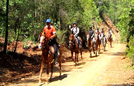 A view from Fethiye Horse Safari