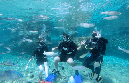 A view from Scuba Diving in Marmaris