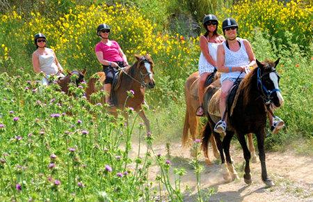 A view from Kusadasi Horse Safari