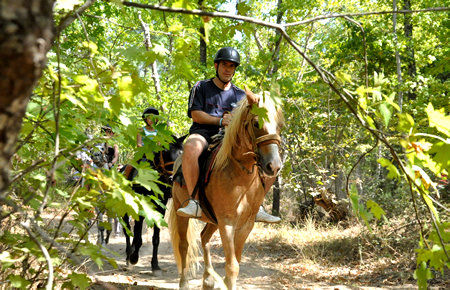 A view from Marmaris Pinar Ranch Horse Safari in Marmaris