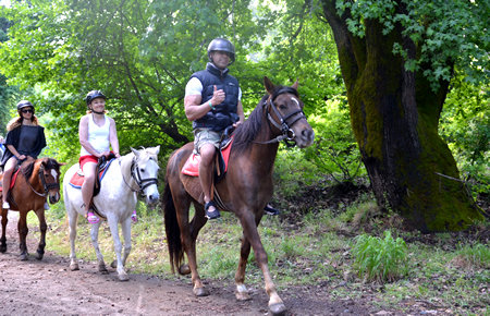 A view from Marmaris Pinar Ranch Horse Safari